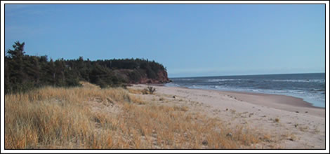 Enjoy the beach at this PEI Beach House for rent