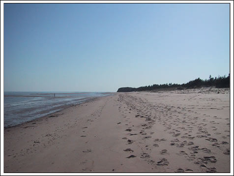 Endless beaches for you to enjoy at our PEI Beach House for rent
